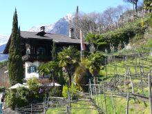 Café Saxifraga – a kőtörőfű nevű alpesi növényről elkeresztelt vendéglátóhely, melynek cégtábláján kevéssé érthető módon két mókus található :)