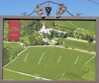 a kastélyszálló szőlőbirtoka